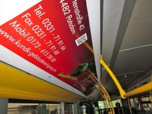 k&k Gebäudereinigung Potsdam | Bus-Werbung
